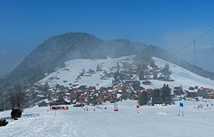 Ski - luge
