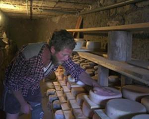 Vente de fromages de Vormy